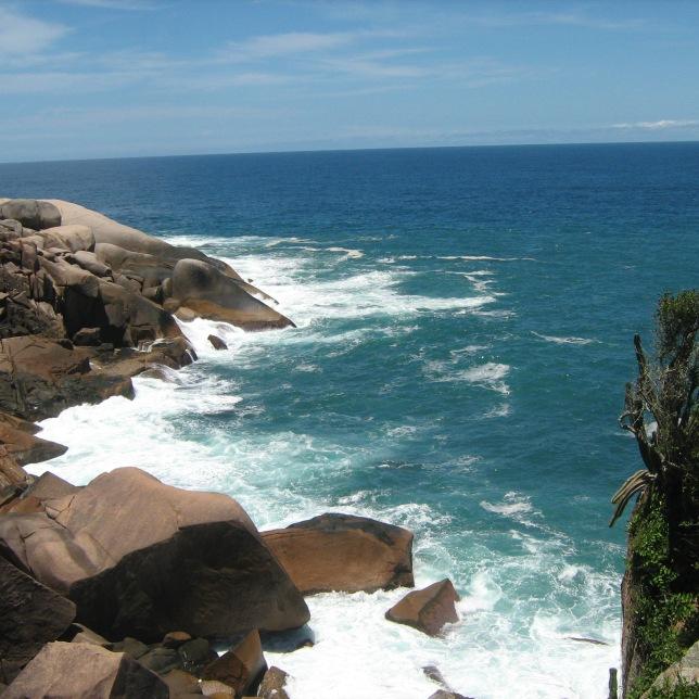 15 - Wanderlei Pereira das Neves (Campeche) – 4 votos
